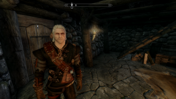 witcher in skyrim...