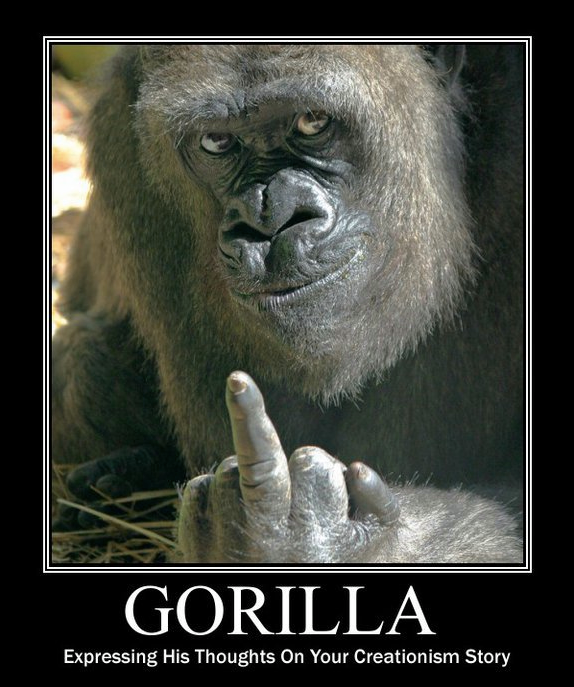 Gorilla awesome