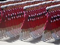 """Red Marching Hoods"""