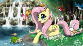 Fluttershy's Paradise