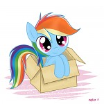 My Little Dashie (Cover Image?)