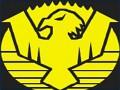 Civilian Defence Force