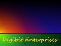 Digibit Enterprises