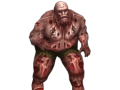 special infected: brute