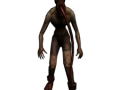 special infected: leaper