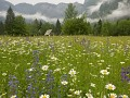 National park in Slovenia