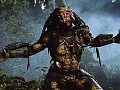 SA Predator Invasion Ideas