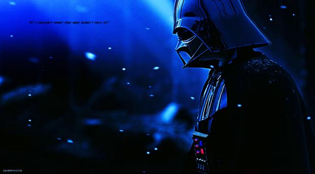 Darth Vader Image 501st Legion Vader S Fist Mod Db