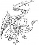 Lictor drawing b&w