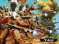 Tau and Kroot Warriors