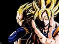 Dragon Ball Z: Fan Generation Fan Group