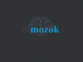 the mozok team