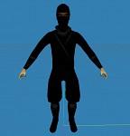 Ninja Model