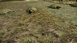Cryengine 3 SDK scene