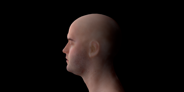 Skin render on blender