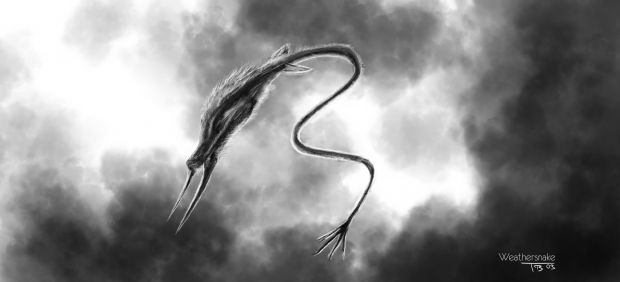 The Weathersnake Concept