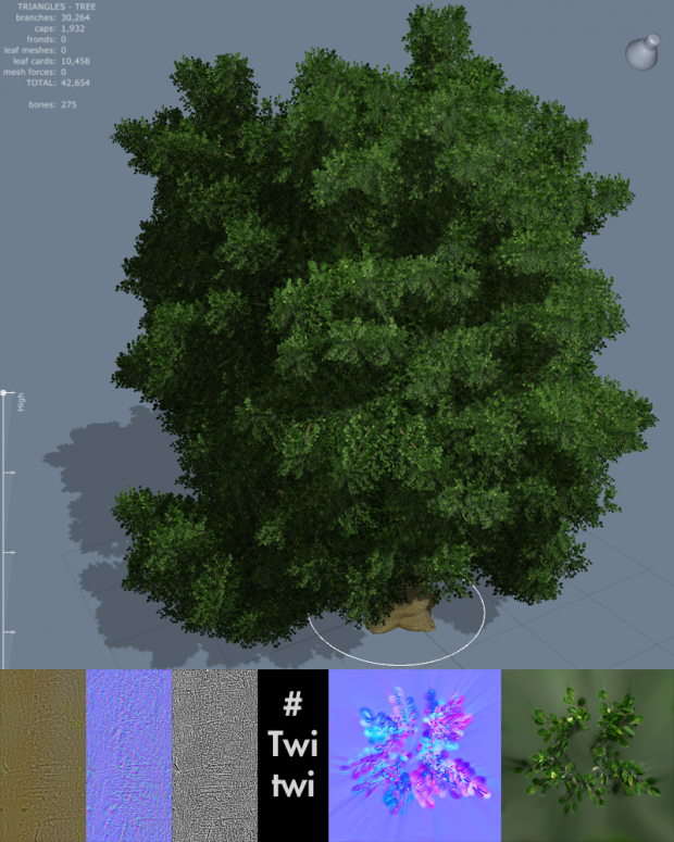 Tree (was supposed to be a beech tree.)