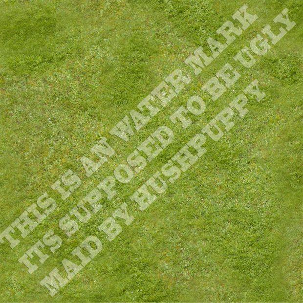 DEMO Grass