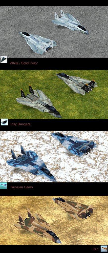 Empire Earth: F14 Tomcat New Skin