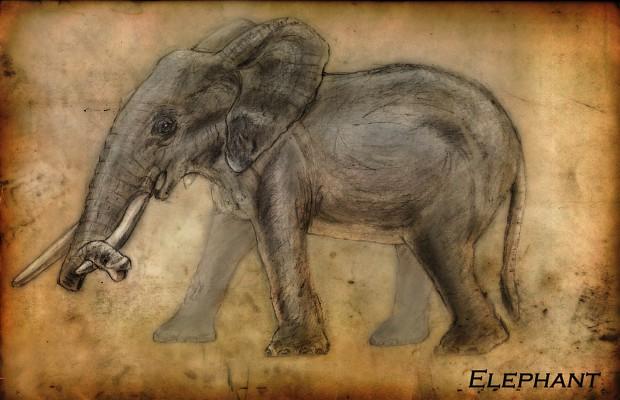 Elephant Concept Paper