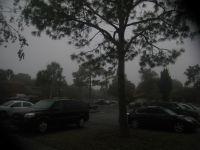 Foggy Fog