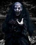 Widow Witch