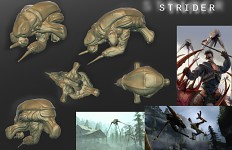 Strider body