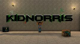 KidNorrisGames