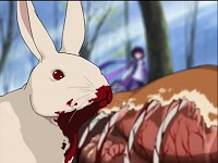 Bloody Wabbit
