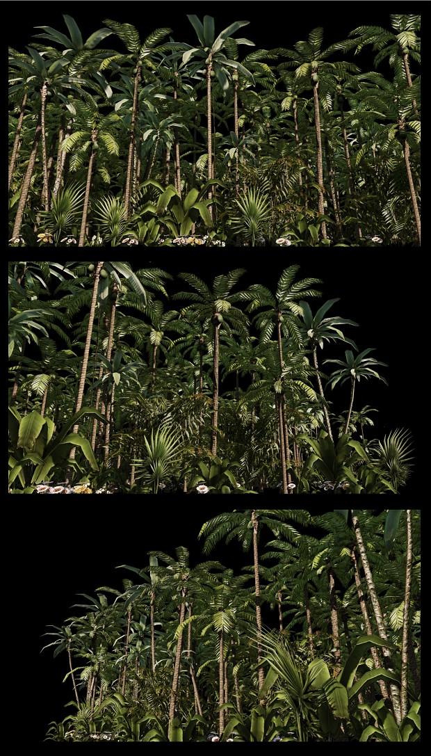 Jungle Trees