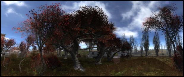 Autumn Aurora