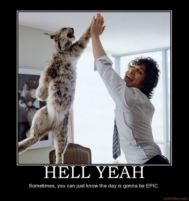 hell-yeah-andy-samberg-cat-high-five-dem