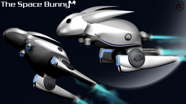 The Space Bunny