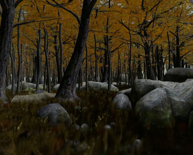 GMod Prop Forest