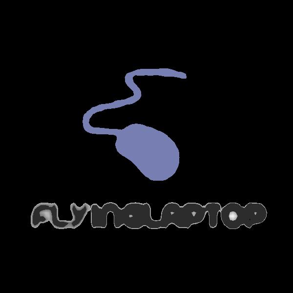 FlyingLaptop