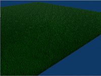 Simple large grass area