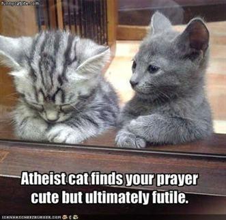 Atheist cat.
