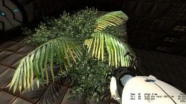 palm+leafs