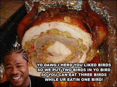 yo-dawg-birds