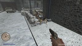 CoD2 dogs fun