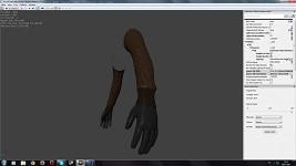 Arms (First Person Model)