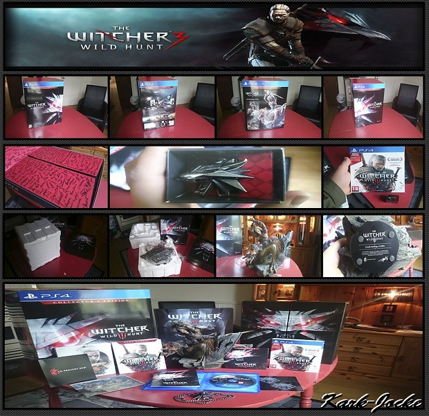 Look what I've got! The Witcher 3 - Wild Hunt