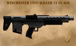 City-Killer 12 Guage