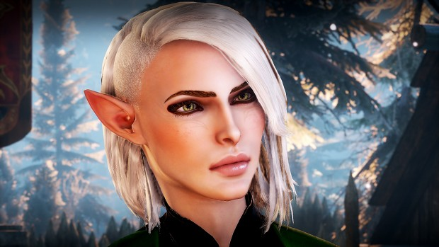 dragon age inquisition epic character build image - Sgt ...