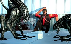 How Sniper distracted the xenomorphs...