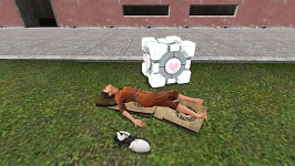 After Portal