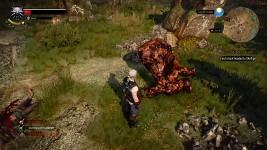 Witcher 3:Wild Hunt