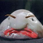 Hot Blob Fish