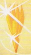Solari Crystal