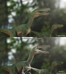 Crynosaurs Velociraptor
